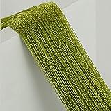 Finoki Cortina de hilos para puerta, dormitorio, baño, 100 x 200 cm (verde hierba)