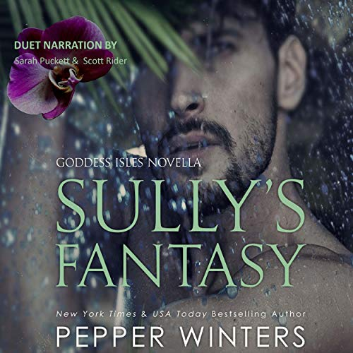 Sully's Fantasy cover art