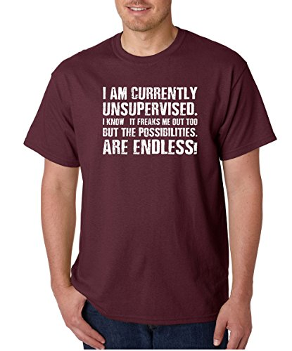 CBTWear Currently Unsupervised, The Possibilities are Endless - Funny Meme Gifts - Sarcastic Men T-Shirts (Medium, Maroon)