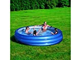 51043 Piscina inflable Bestway 3 anillos 201 x 53 cm reflectante...