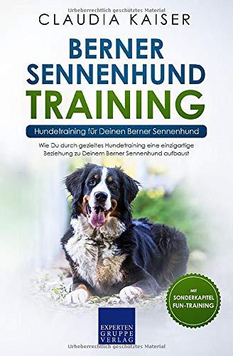 Berner Sennenhund Training - Hundetraining für Deinen Berner Sennenhund: Wie Du durch gezieltes Hundetraining eine einzigartige Beziehung zu Deinem ... aufbaust (Berner Sennenhund Band, Band 2)