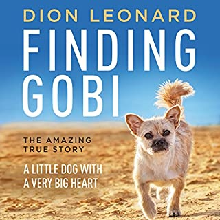 Finding Gobi cover art