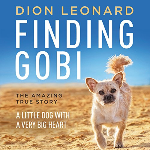 Finding Gobi audiobook cover art