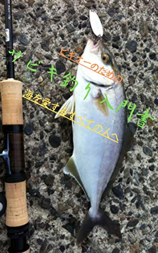 ビギナーのためのサビキ釣り入門 魚突き素潜り体験