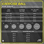 Ballon De Gym (Tailles Multiples) Ballon Suisse Pour La Forme Physique, La Stabilité, L'équilibre Et Le Yoga-Guide D'entraînement Et Pompe Rapide Inclus-Design De Qualité Professionnel Anti-Eclatement #3