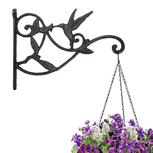 Sumnacon 2 Pcs Cast Iron Plant Hanging Bracket Hook-10' Iron Decorative Wall Mount Plant Hangers Indoor/Outdoor Bracket for Hanging Bird Feeders, Lanterns, Planters, Wind Chimes,Ornaments-Hummingbird