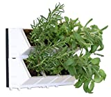 Vinea Living Walls 16 Plants - Vertical Wall Planter with Pots, Raised Planter, Hanging Pockets Raised Garden Raised Planter Boxes Planter Set for Patio Balcony Indoor Outdoor Flower Wall Patio Set