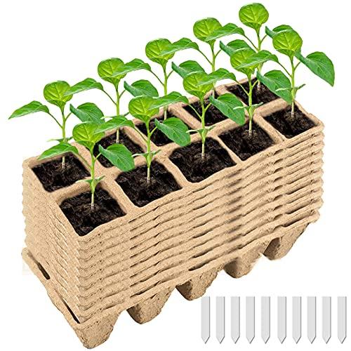 JuneJour Anzuchttöpfe für Pflanzen 10 Stück mit 10 pcs Etikett Anzuchttöpfe Pflanztöpfe Eckig Pflanztöpfe zur Pflanzen Anzucht
