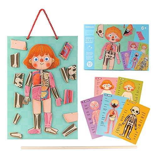 Wooden Puzzles for Toddlers Magnetic Human Body Anatomy Educational Learning Preschool Toys with Boy and Girl Body Parts, Organs, Muscles and Bones Puzzles for Kids Aged 5 to 12 Years Old 90 PCS