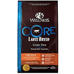 natural dry dog food by wellness core to help with food allergies