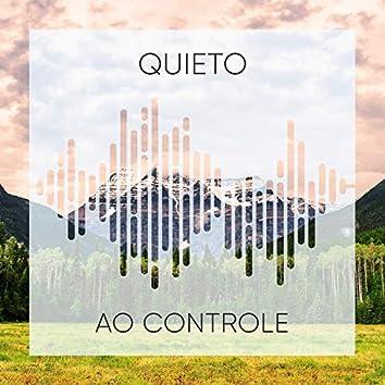 Quieto Ao Controle