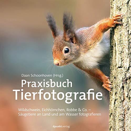 Praxisbuch Tierfotografie: Wildschwein, Eichhörnchen, Robbe & Co. – Säugetiere an Land und am Wasser fotografieren