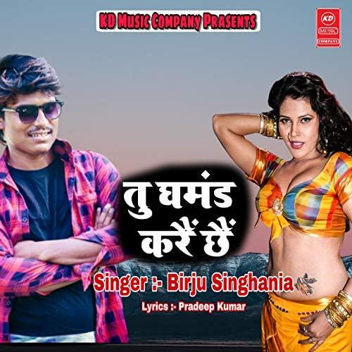 Birju Singhania