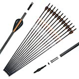 Pointdo 100% Carbon Arrow Practice Hunting Arrows with Removable Tips for Compound & Recurve Bow(Pack of 12) (Black Orange)