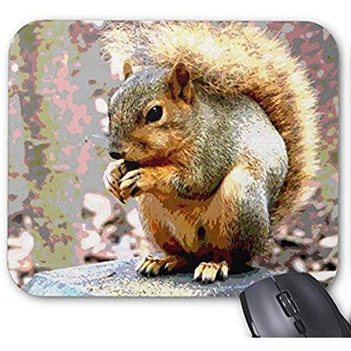 Smity Mouse Pad 30 * 25 * 0,3 cm Mauspad Fashion Designed Mousepad Büro- und Familien-Desktop-Pads Eichhörnchen-Mauspad