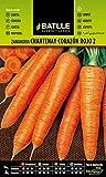 Semillas Batlle - Zanahoria