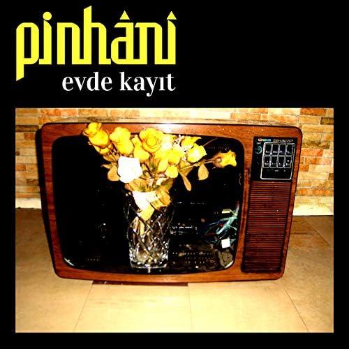 Pinhani