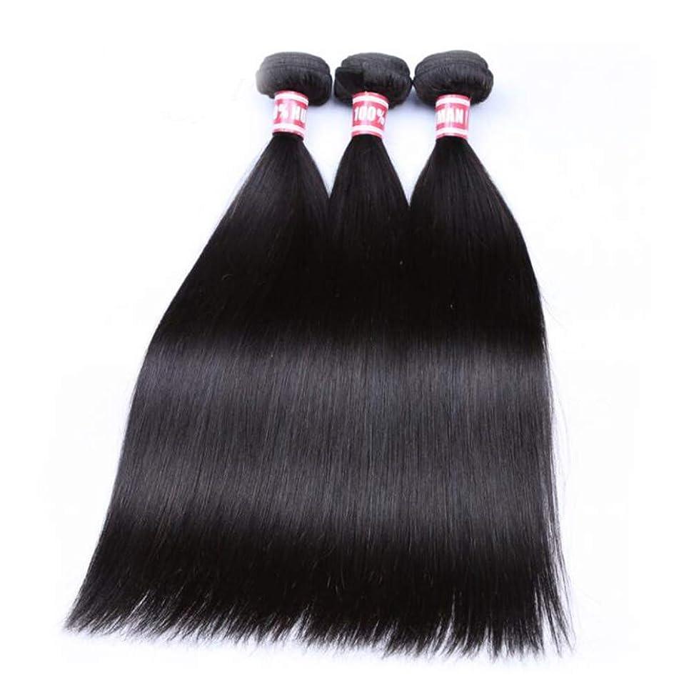 守銭奴ファンシー不公平かつらかつらストレート3バンドル 100% 未処理レミー人間の髪の拡張機能ナチュラルカラー (8-26 インチ)
