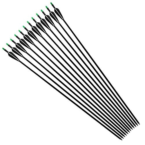 "ZZUUS 12Pcs 33"" Fiberglass Arrows with Replaceable Screw-in Point Target Practice Arrow for Compound and Recurve Bow"