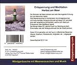 Entspannung und Meditation Herbst am Meer – Windgeräusche und Meeresrauschen der Ostsee mit Musik – Entspannungsmusik und Naturgeräusche – gemafrei - 2