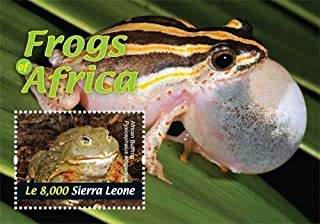 2011 Frogs of Africa, Collectible Souvenir Stamp, Mint Never Hinged