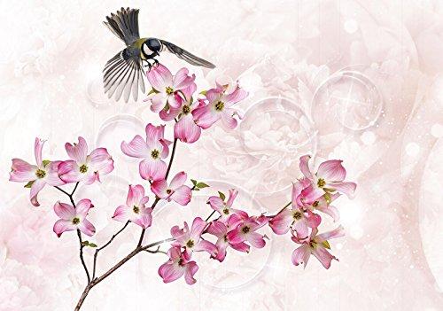 Photo Papier peint Welt-der-träume | Arlequin sur une fleur | | Photo Papier peint 20018 _ P-ms | Nature Rose Beige Bird animaux Rose Motif, P8 (368cm. x 254cm.)