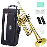 EastRock Gold Trumpet Brass Standard Bb Trumpet Set for Beginner, Student with Hard Case,Upgrade Packaging, Gloves, 7C Mouthpiece,Trumpet Cleaning Kit-Lacquer Gold