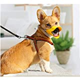 WORDERFUL Anti Bite Duck Muzzles Dog Mouth Cover Duck Mouth Shape Anti-Called Muzzle Masks Pet Mouth Bite-Proof Mask (Yellow, S)