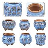 Plushfarm 6pcs Maceta de macetas Cerámica Creativa de Escritorio de la decoración de la Planta de la Planta del jardín (Color : Sky Blue)