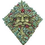 Nemesis Now Berry - Placa de Pared (23 cm, Resina Verde), diseño de Barba, Talla única
