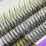 60pcs 8-15mm to Choose Beauty Nature Long Fish Tail Design Cluster Eyelashes Black Soft Light Individual Fake False Eye lashes Grafting Volume Eye Lashes Extensions (10mm)