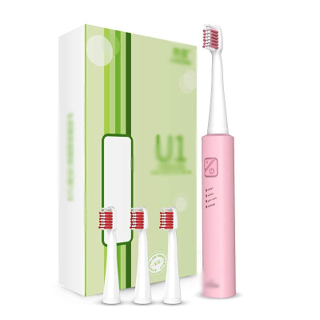 刺激する透ける尾USB充電式ソニック電動歯ブラシ、31000回/分振動周波数、防水IPX7フルボディ,C