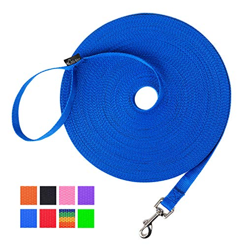 Hi Kiss Dog/Puppy Obedience Recall Training Agility Lead - 15ft 20ft 30ft 50ft 100ft Training Leash - Great for Training, Play, Camping, or Backyard Blue 30 Feet