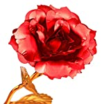 powstro k 24k gold artificial rose, long stem foil golden flower romantic gift for valentines day anniversary birthday wedding special days for girlfriend wife mom