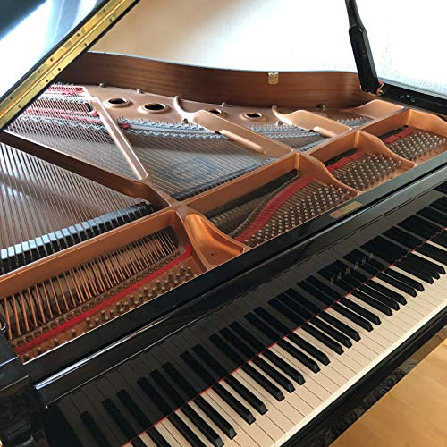 Una Mattina (Piano Instrumental version)