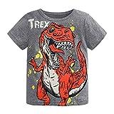 LUBITY BéBé T-Shirt à Manches Courtes à Imprimé Dinosaure pour Garçon Haut Et Imprimé Lettres de Dinosaures pour Enfants T-Shirt Grande Taille Col Rond Pas Cher Shirt (Gris, 5-6ans)