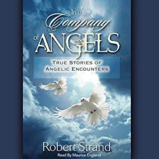 In the Company of Angels audiobook cover art