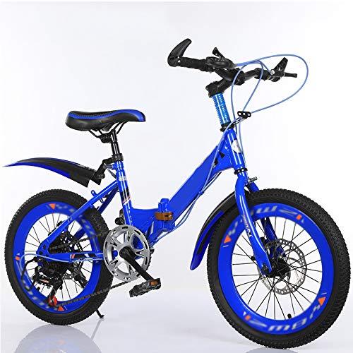ZWBTY Bicicleta para Niños, Bicicleta De Estilo Libre para Niños Y Niñas...