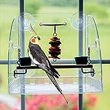 Bird Window Play Center for Small to Medium Birds