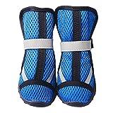 PIT Zapatos del Perro del Verano Transpirables Big Dog Sports Mesh Zapatos Perro Golden Retriever Bianmu Grandes Zapatillas Deportivas Perros de compañía (Color : Blue, Size : XS)