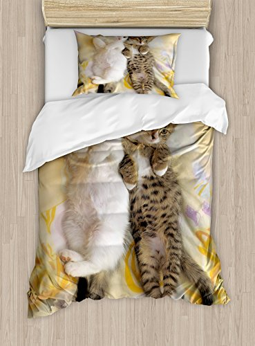 Ambesonne Funny Duvet Cover Set, Kitten Siblings Lying Beside Sleepy Heads Cat Pet Animal Lovers Best Friends Image, Decorative 2 Piece Bedding Set with 1 Pillow Sham, Twin Size, Pastel Cream