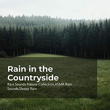Rain in the Countryside