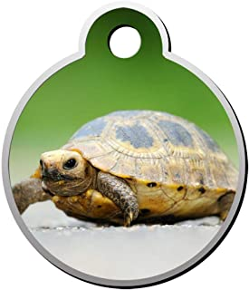 BSARRE Custom ID Pet Tag Double Sided Stainless Steel Necklaces Dog Tag Round Baby Tortoise