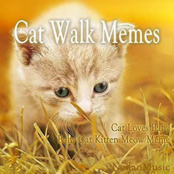 Cat Walk Memes (Soothing Relaxation Music for Sleep, Studying)