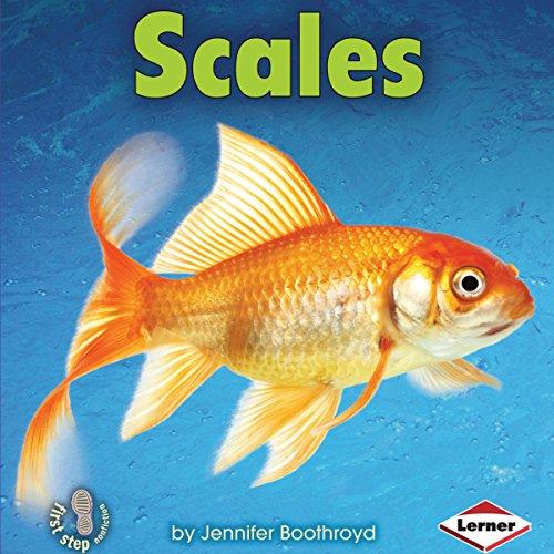 Scales copertina