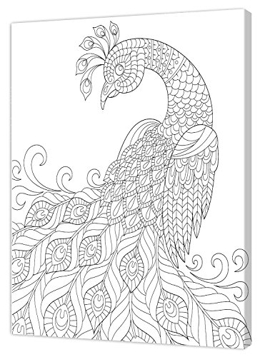 Pintcolor 7808.0 châssis avec Toile imprimée à colorier, Bois de Sapin, Blanc/Noir, 40 x 50 x 3,5 cm