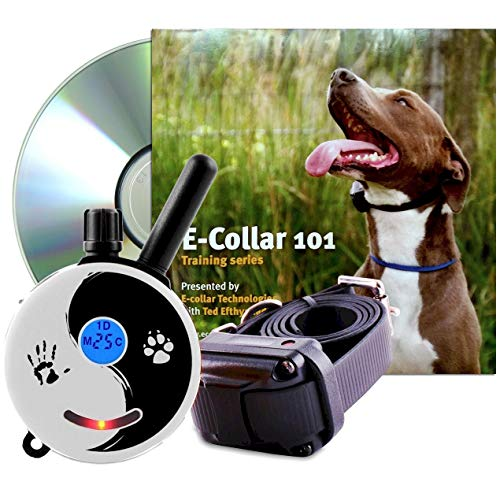 Educator Zen-300-TV Bundle: Zen Mini 1/2 Mile E-Collar Remote Dog Training Collar Plus 101 Off-Leash 4 Sessions Dog Training DVD