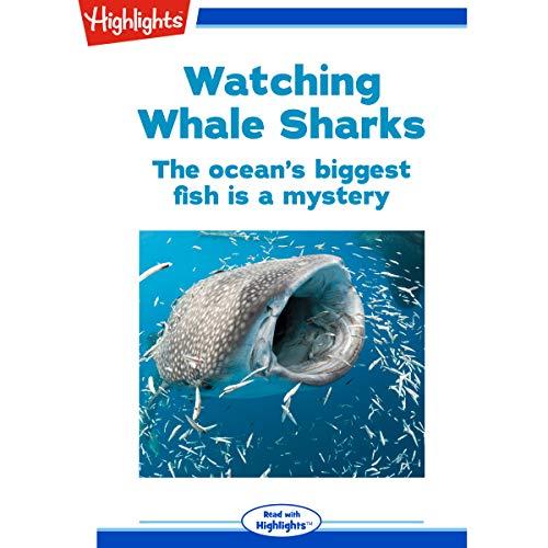 Watching Whale Sharks copertina