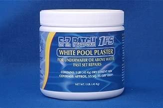 EZ Products EZP-005 White Pool Pool Plaster Fast Set- 1 Pound