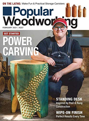 Popular Woodworking 1year